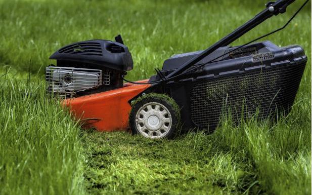 Comment entretenir sa pelouse nos conseils pour un for Tarif tonte gazon par paysagiste