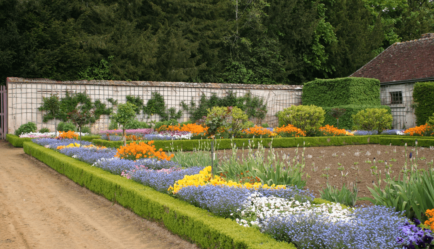 bordure-vegetale-jardin